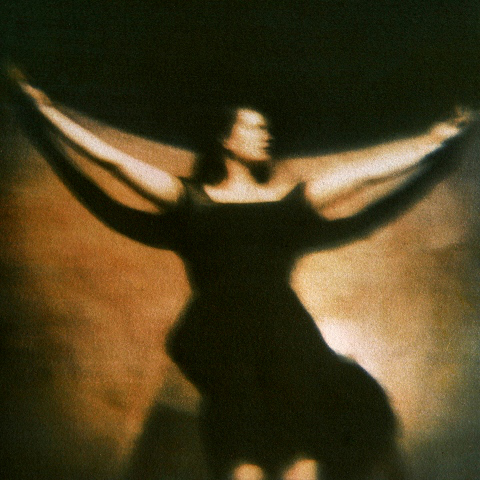 LATE AFTERNOON, LISTENING VESSEL  , from the  Figurative  series; tri-color gum bichromate. Limited Edition 2/10