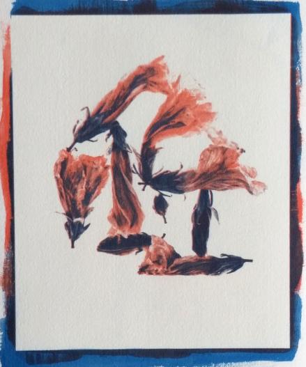 Hibiscus , ©Tom Moore 2016 (gum bichromate print, 2 layers)