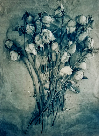 Valentine Roses , from  The Old Garden  series.  One layer gum bichromate over cyanotype.  Limited Edition