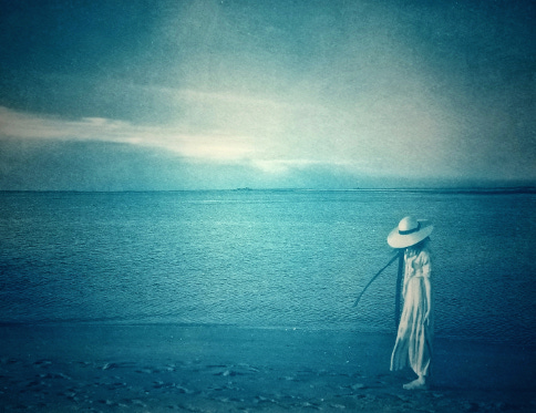 Along the Cape Fear , 2018 from the  Figurative  series.  Cyanotype.  Limited edition 3/10