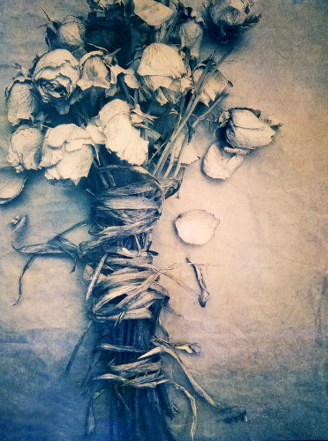 Bound Roses,  2018, from  The Old Garden  series.  Tricolor gum over cyanotype.  Limited Edition of 5