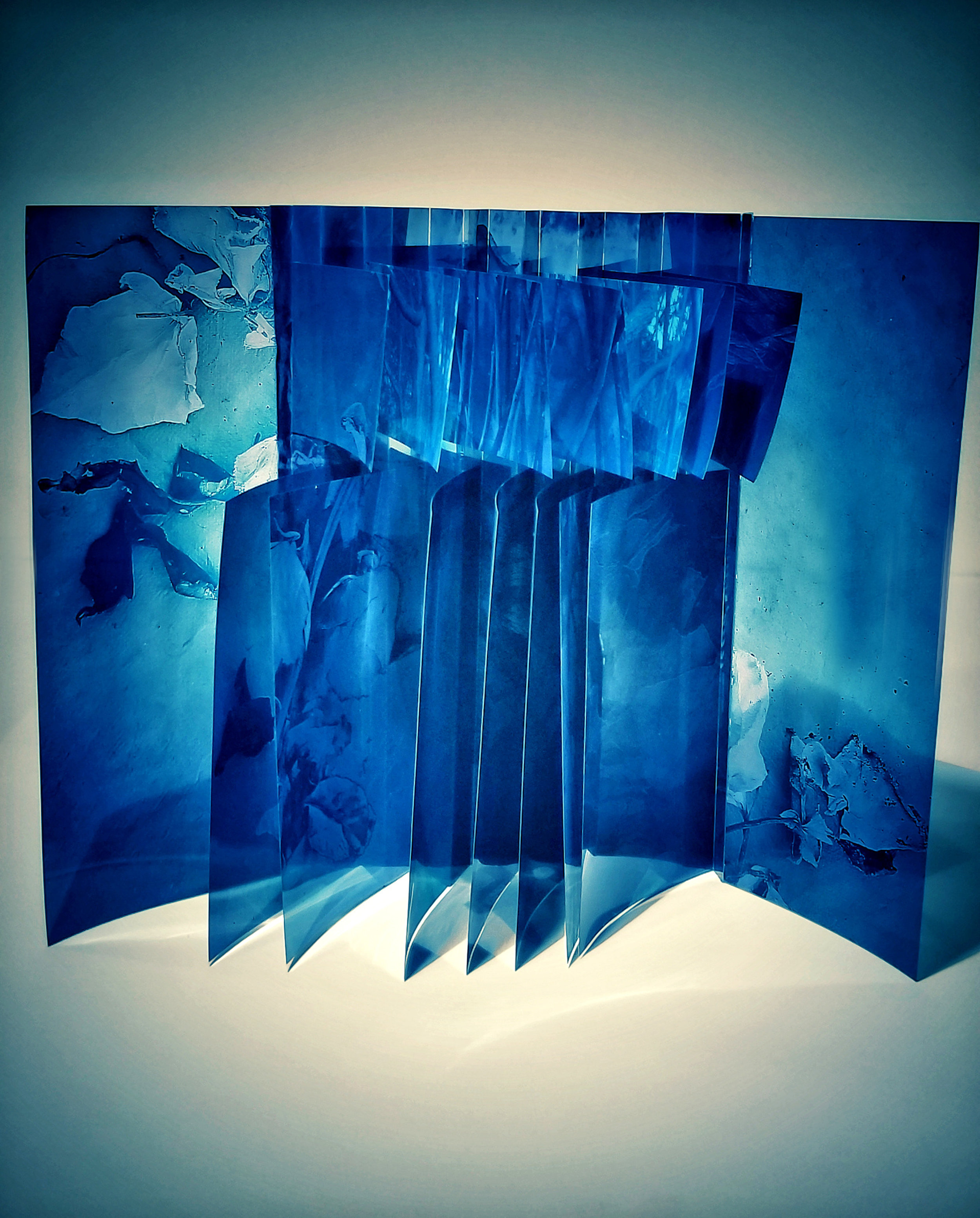 Flag Book, 2019,  Bound Roses  (Cyanotype)