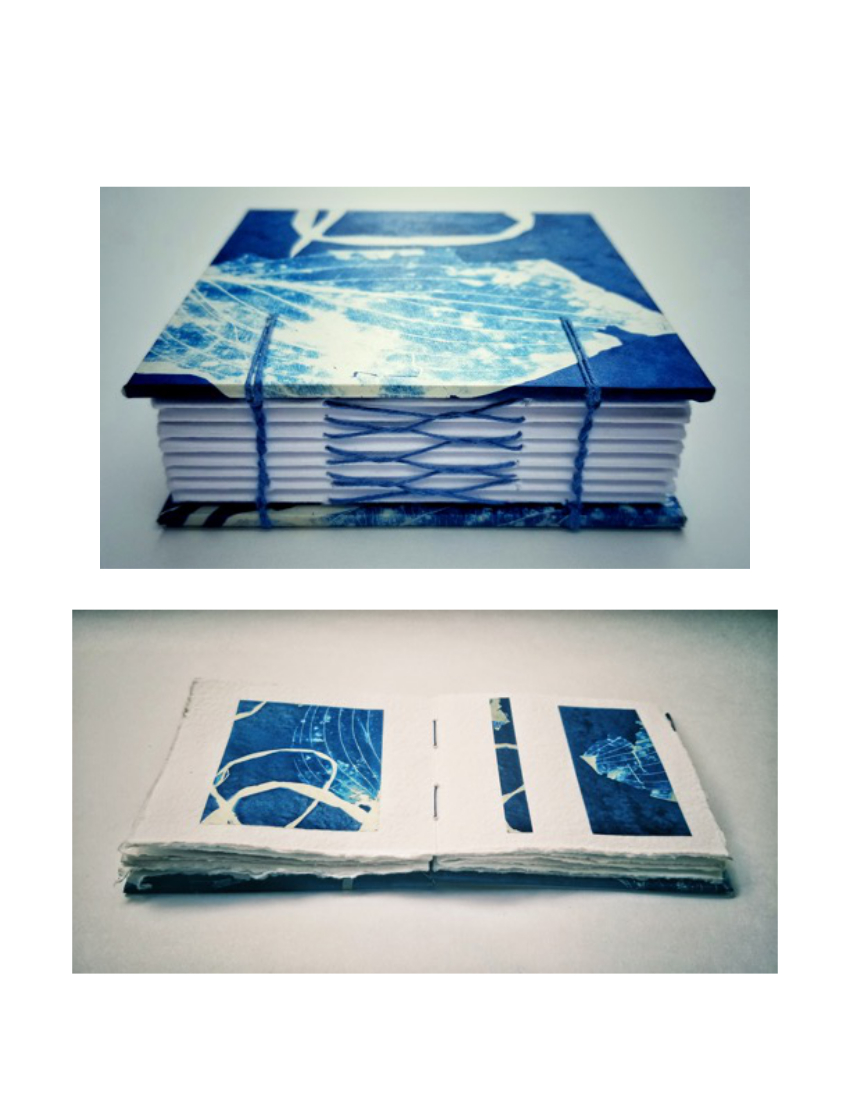 French Link Handmade Artist Book  (Cyanotype details of Photograms)