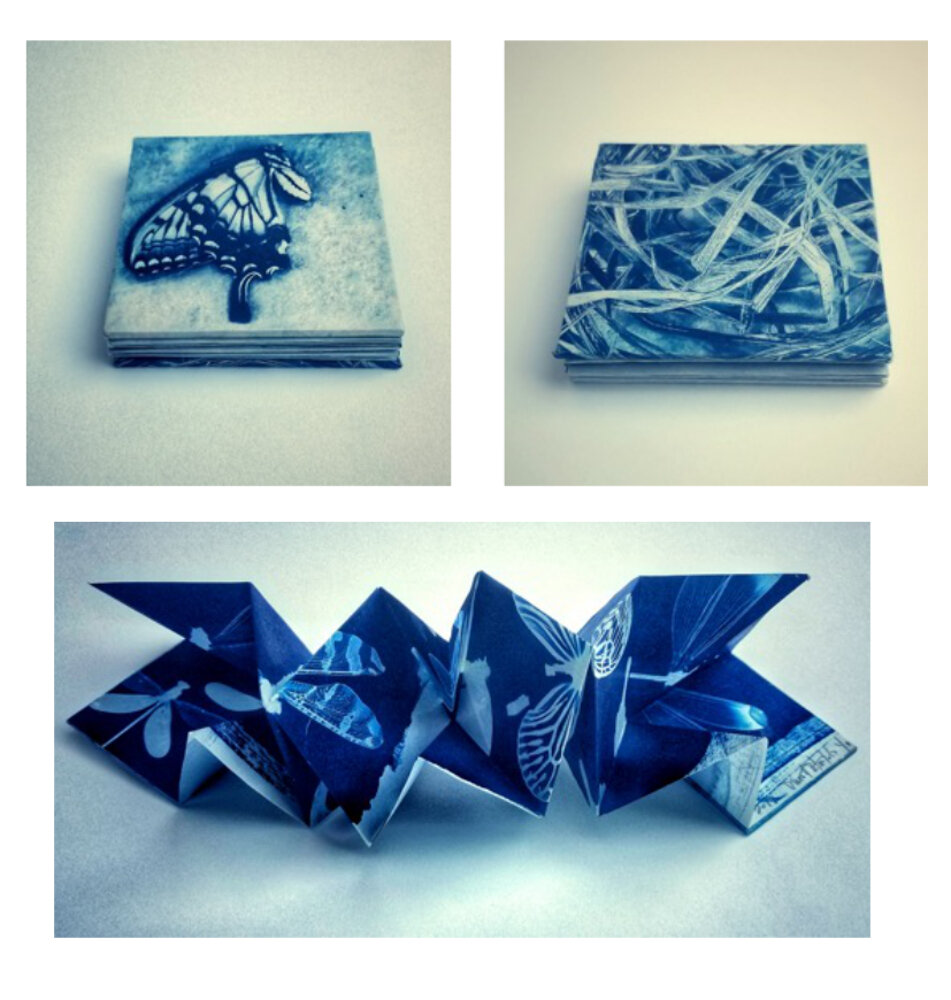 Gossamer Wings, Origami Accordion Book 201 9 (Cyanotype photograms, on Japanese Gampi paper) 1/1