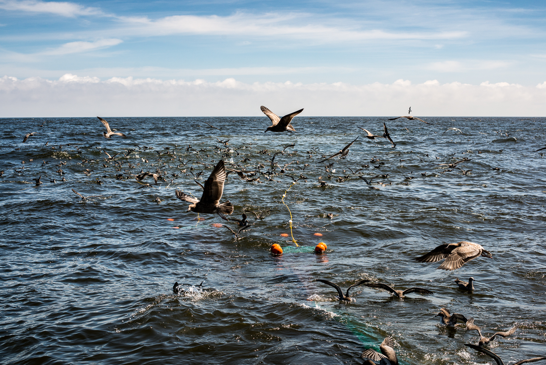 PNWfishing-5.jpg