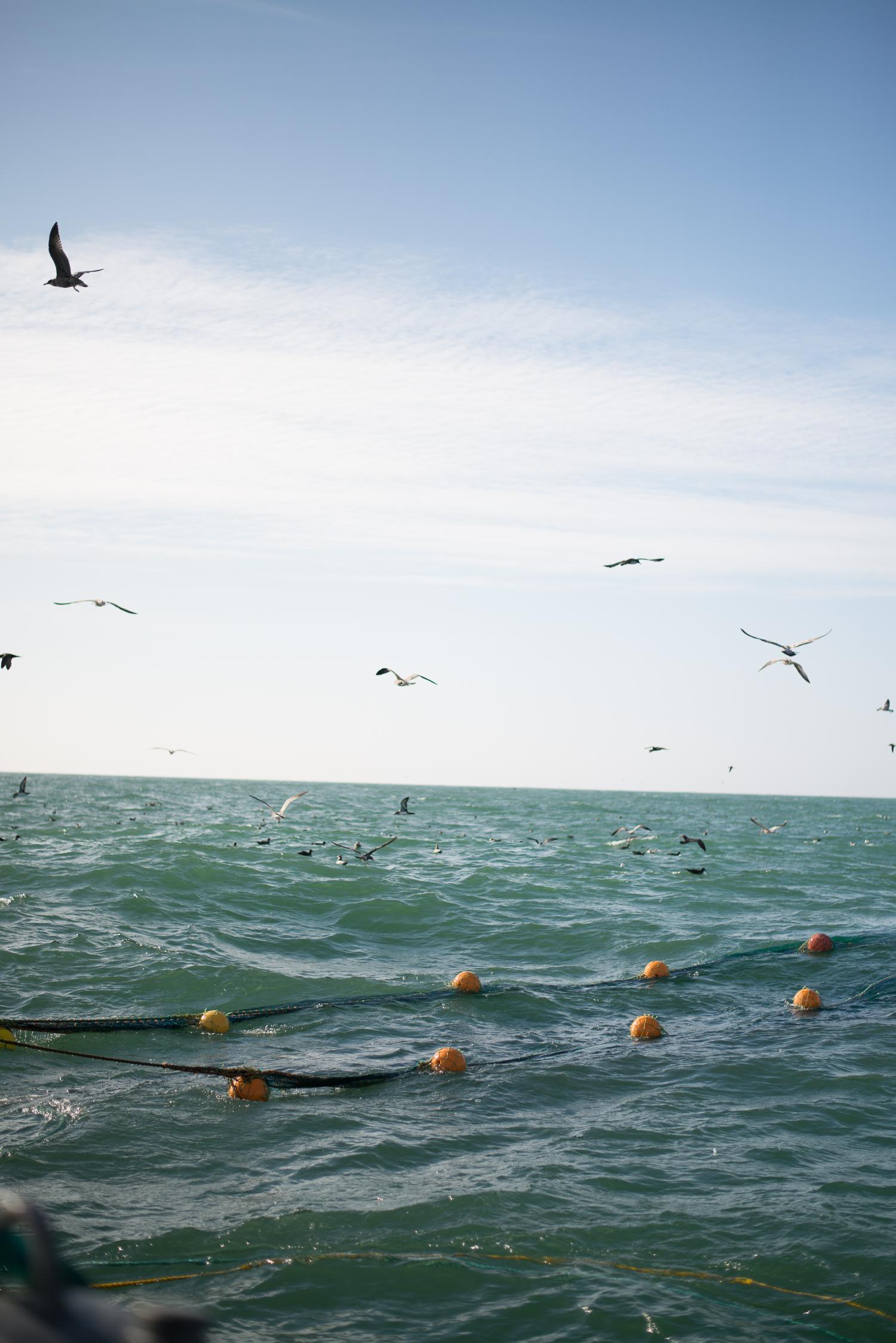 PNWfishing-27.jpg