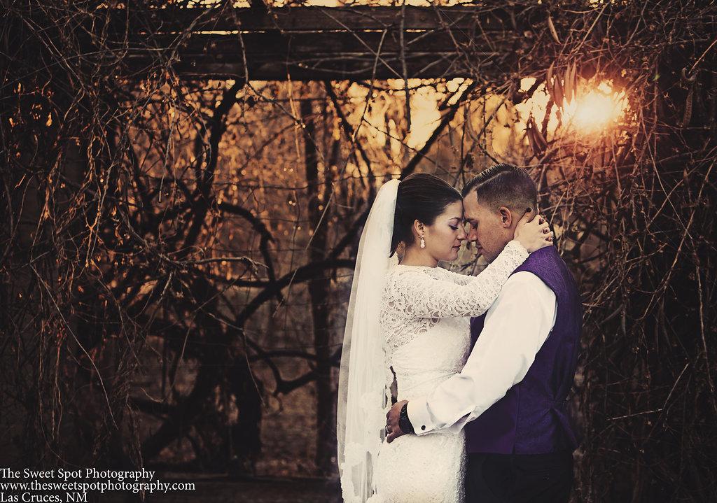 wedding photography Las Cruces TheSweetSpotPhotography las cruces-1037.jpg