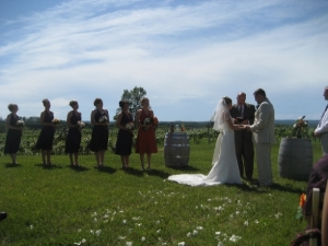 Have you considered having a wedding in a vineyard?