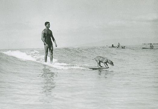 shwm-surfer-w-dog_lrg.jpg