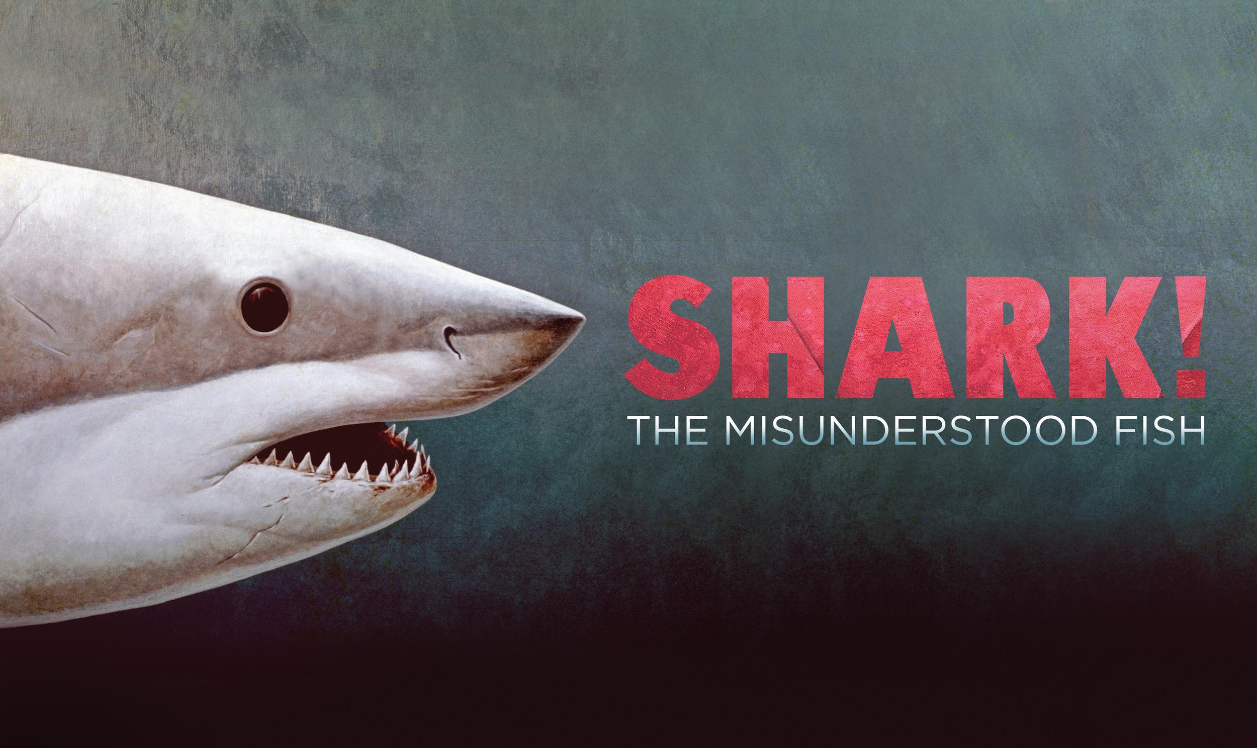 WhalingMuseum_SHARK_The_Misunderstood_FIsh.jpg