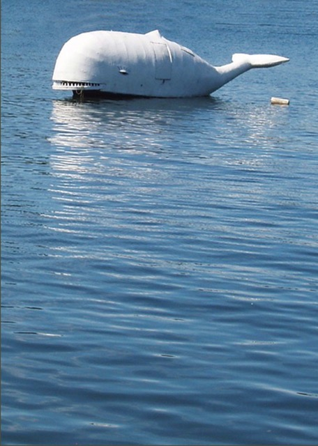 "Pat Field, ""Harbour Whale"" 2017, Photograph"
