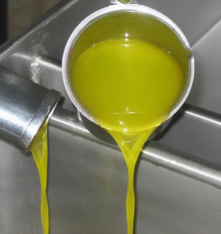 Olives in the Net TH KL.jpg