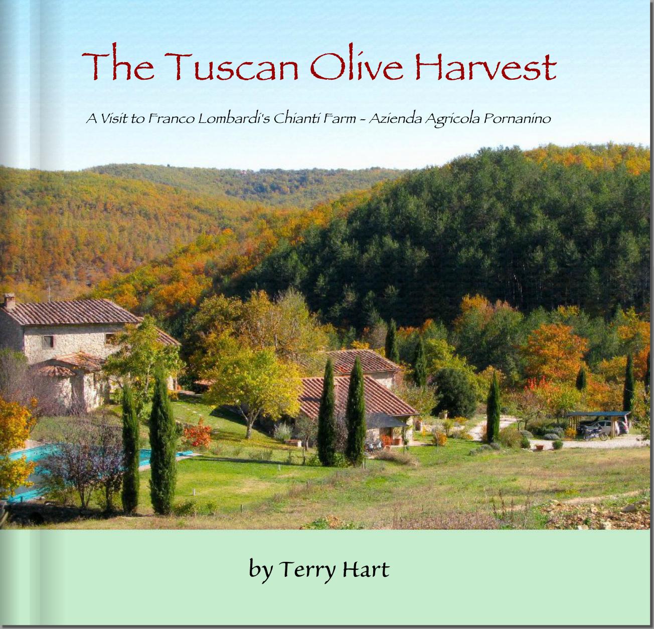 OLIVE HARVEST BOOK