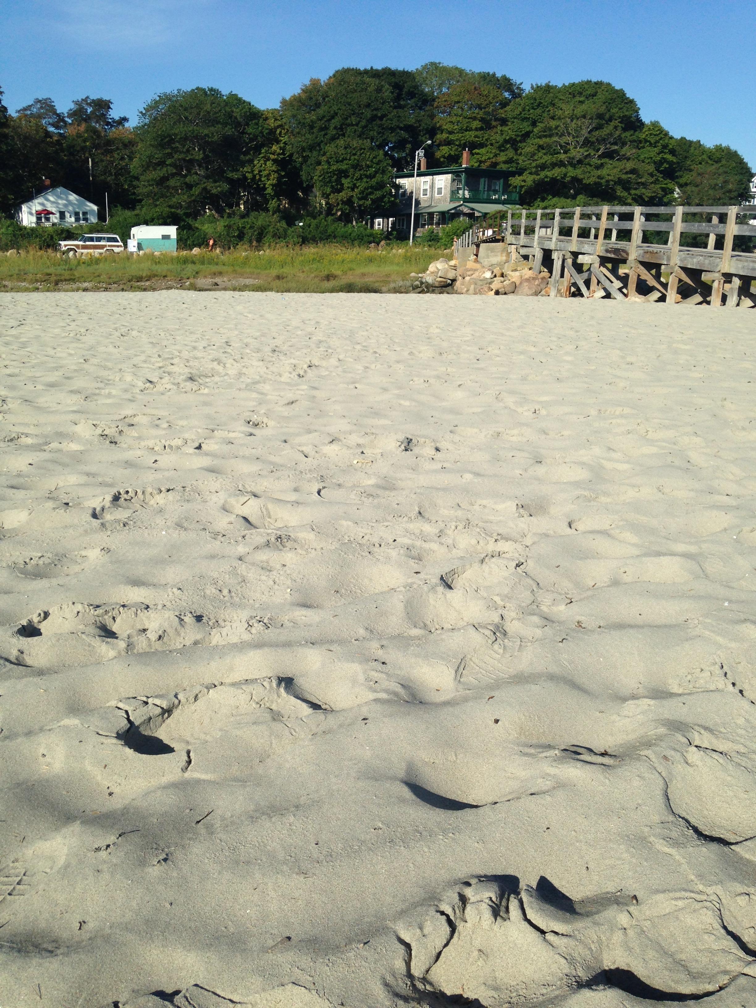 Spot the MMoAA on Good Harbor Beach