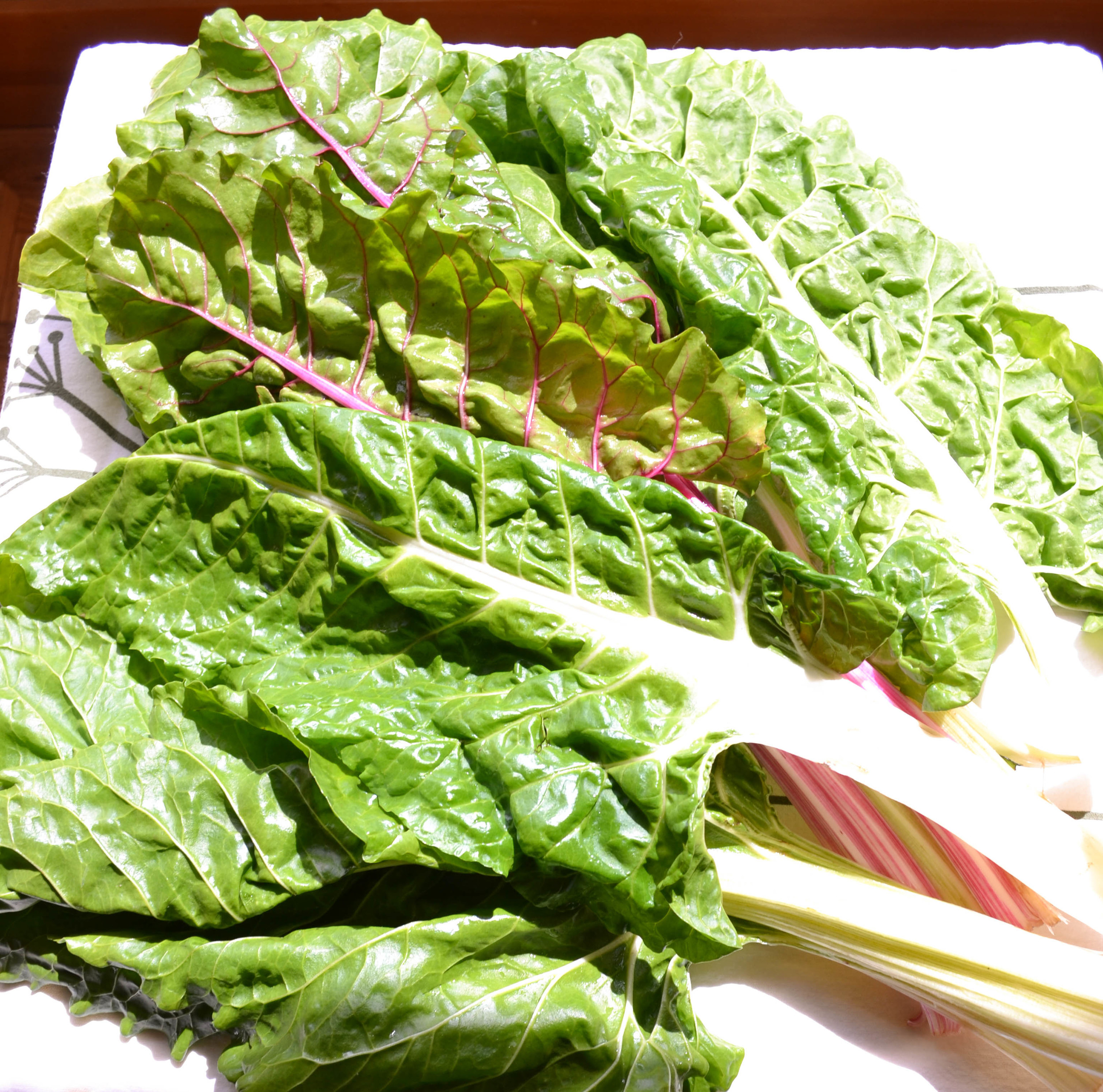 Glorious Chard, Fresh and Nutritious...
