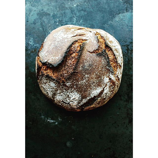 Bold bake for breakfast today. It's the rye-wheat from @blainewetzel 's beautiful Sea and Smoke. I love how this book highlights so many special plants and ingredients we have in this area, including those right here across the bay from alumni. #rye #ryebread #pnwspring #sourdough #bread #bread🍞 #breadbaking #fermented #foodphotography #f52grams #feedfeed #baking