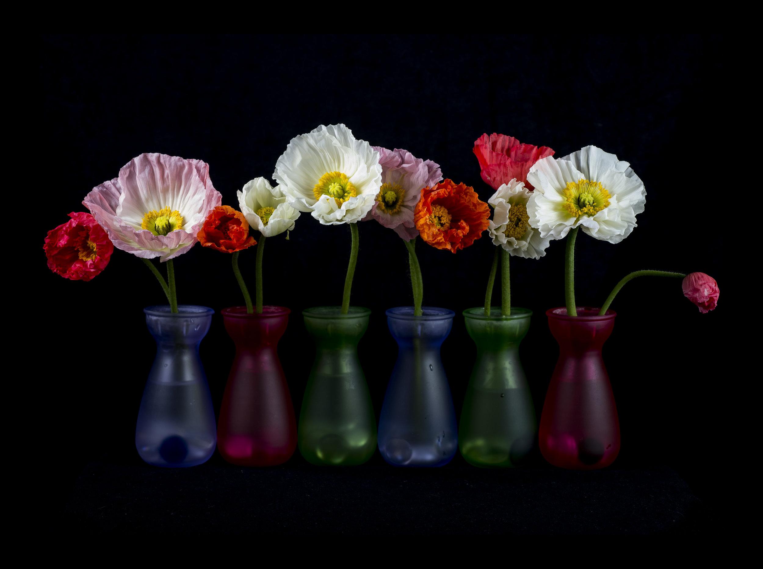 Durham_D4sFLASHTest_FlowerStudy11x15_292015.jpg