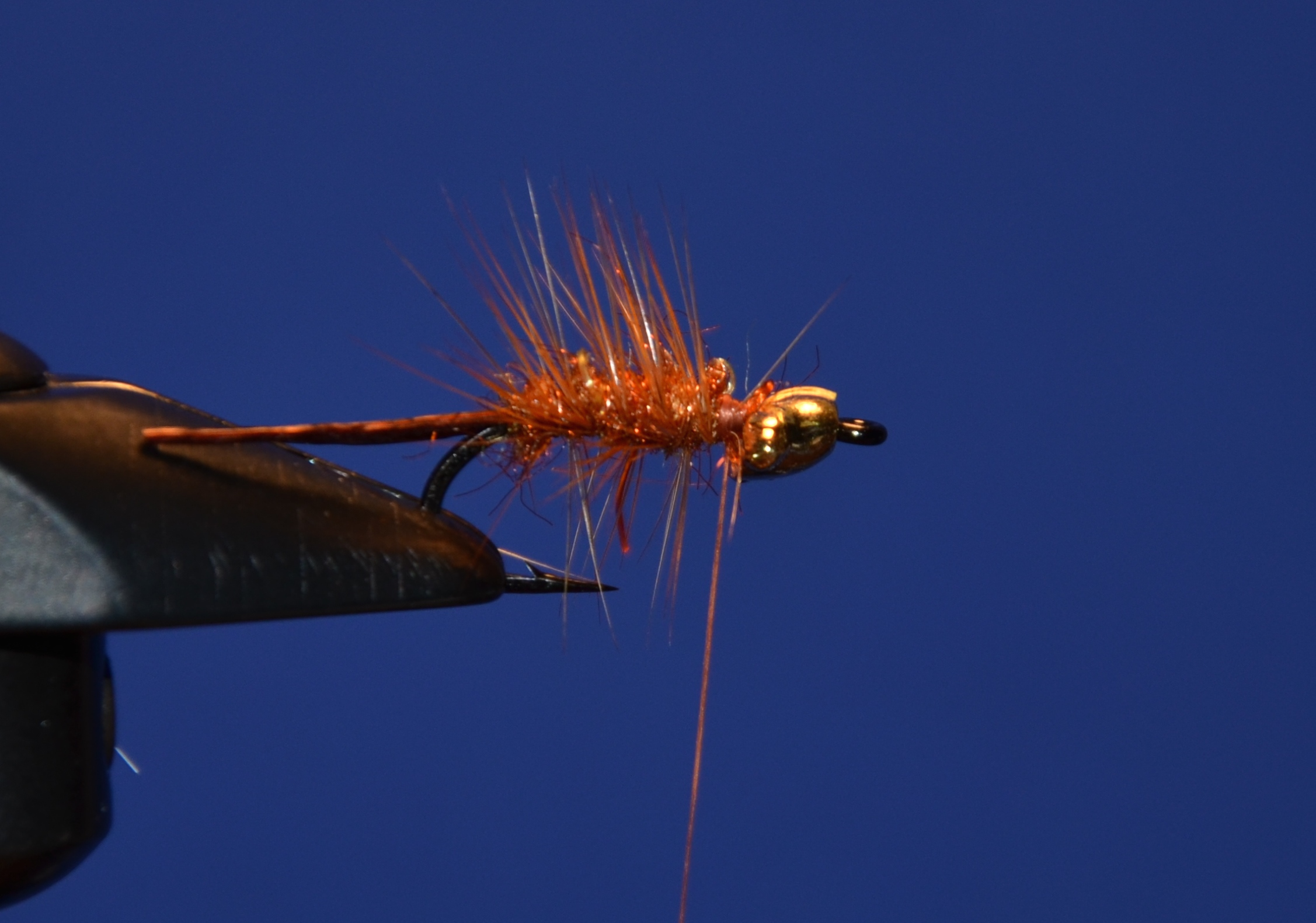 Tie in hackle and wrap back, then work the wire back through to the front of the body. Same as you would for a wooly bugger.