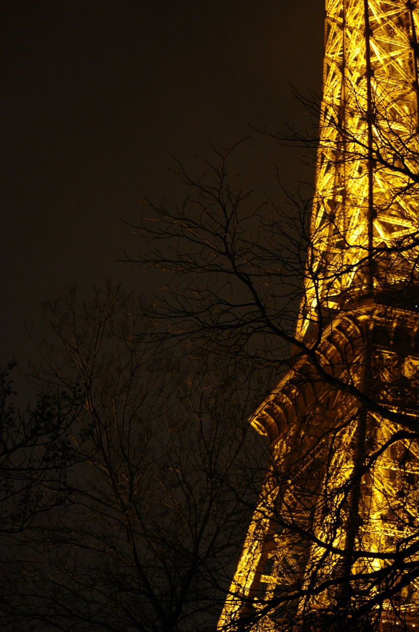 Twilight. Iron. Lady. Paris. France.