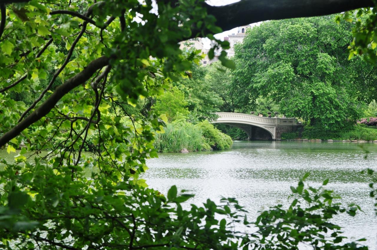 Bow Bridge. Central Park. New York City. United States.
