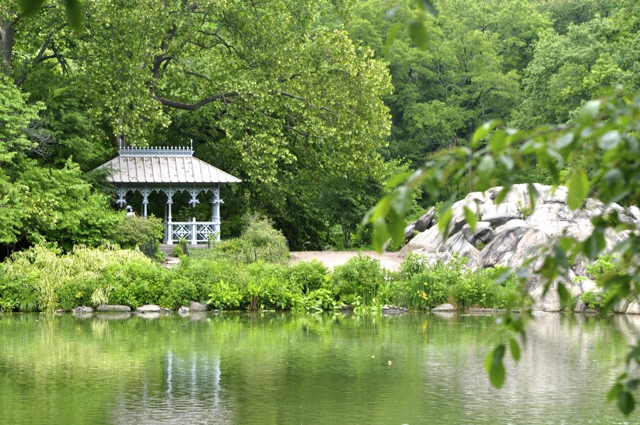 Framed. Central Park. New York City. United States.