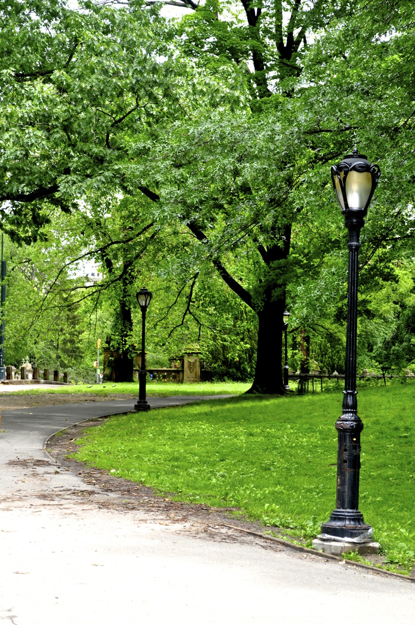 Walk in the Park. Central Park. New York City. United States.