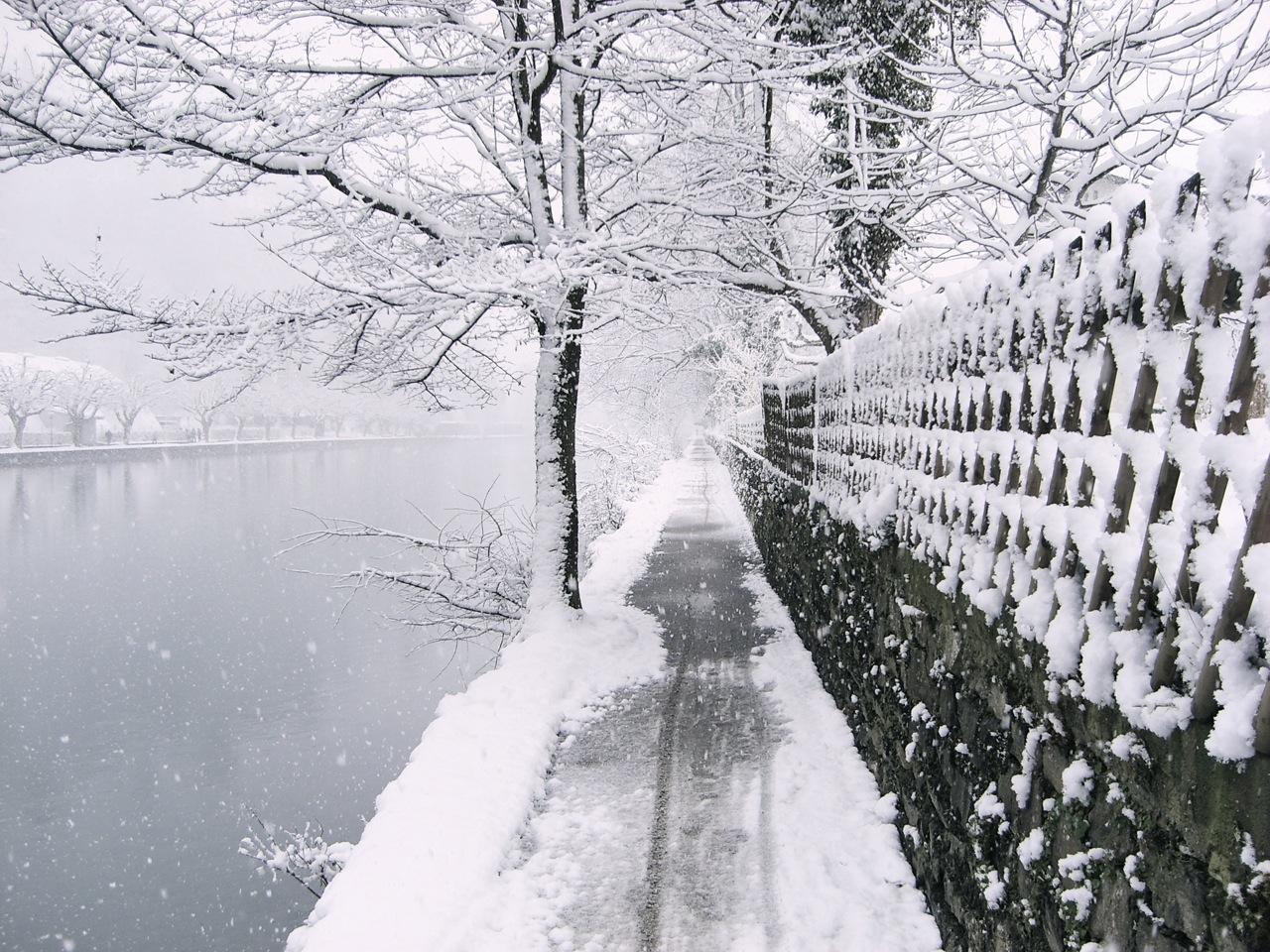 A walk in the snow. Thun. Switzerland.