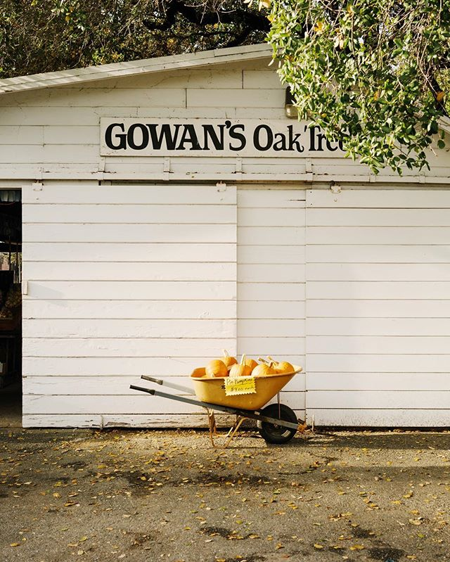Lovely fruit stand in Boonville, CA