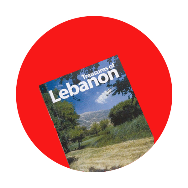 Trillion for Lebanon Foundation