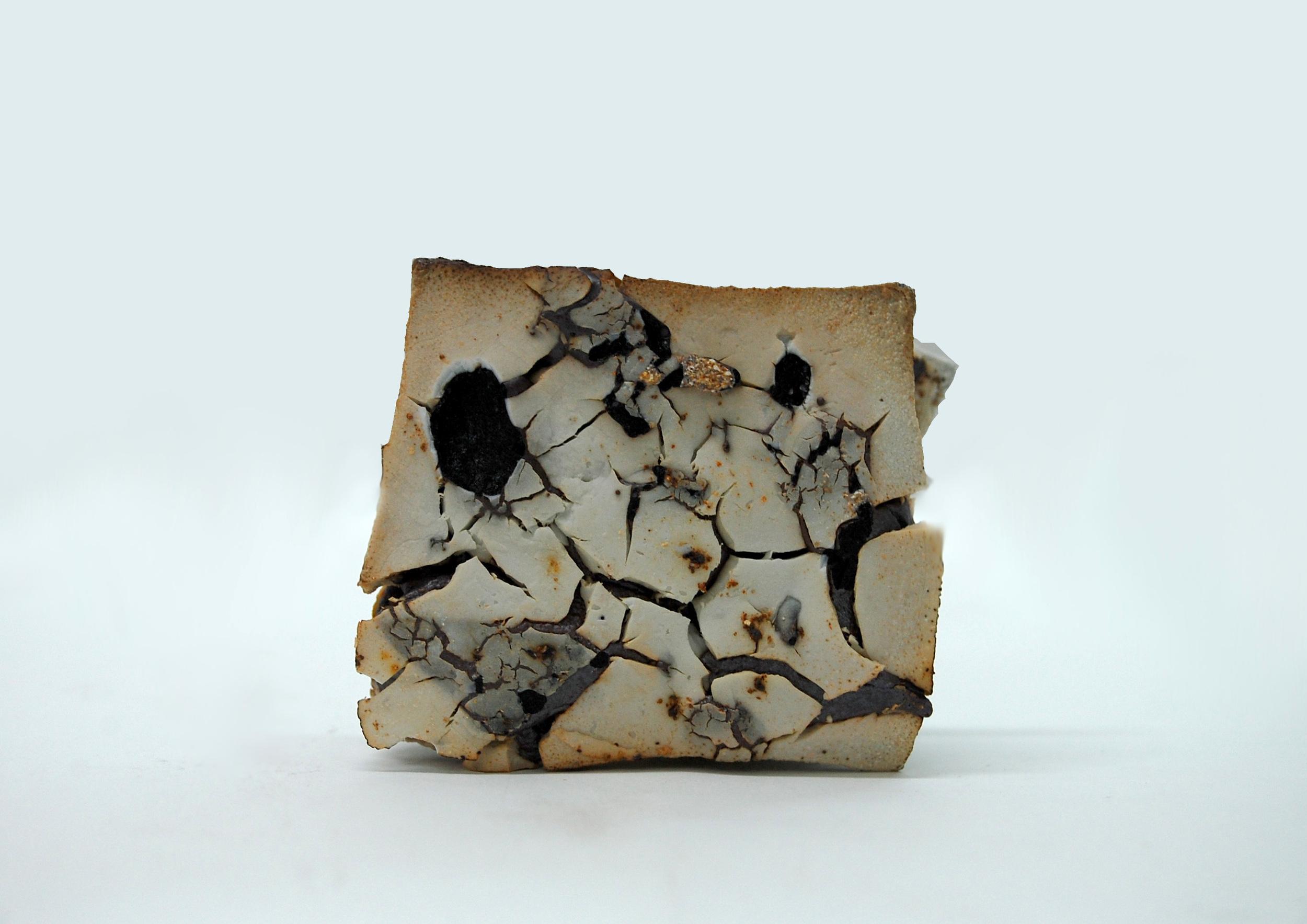 Porcelain + Plant Ash