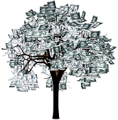 img-money-tree.png