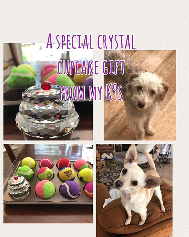 My cupcake game triggered a crystal cupcake from my clients 'Fang & Pard' warm wags of thanks for the unique & thoughtful gift ❣️🐾 #justpawstraining #puppytraining #cupcakegame
