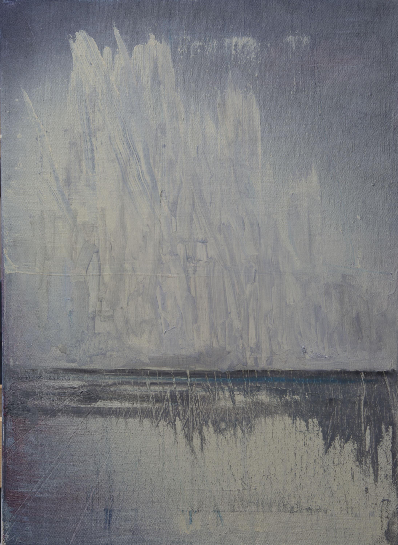 2013, 55x45cm, oil on canvas