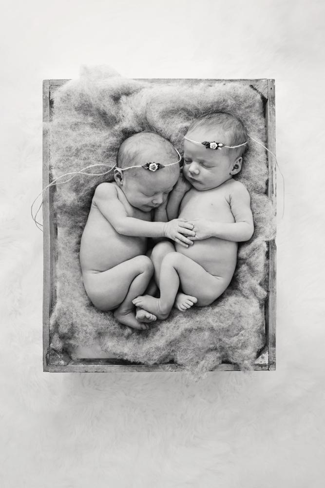 Auckland Newborn Photograpy.jpg
