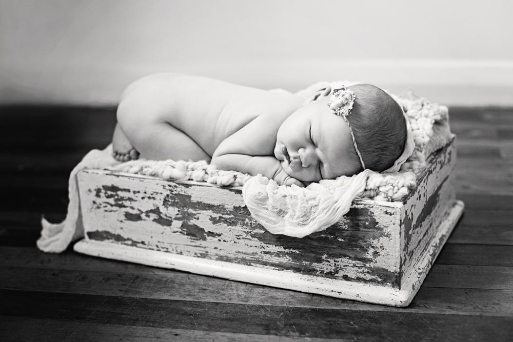 baby photo shoot.jpg