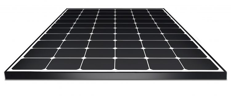 LG Neon R module with high efficiency IBC N-type cells - up to 365W. Image credit LG