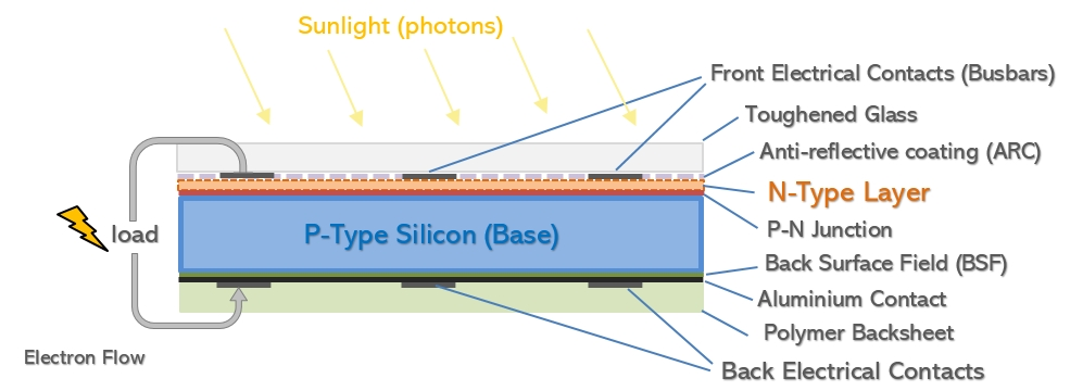 Basic construction diagram of a common P-type silicon cell - Mono or Multi crystalline  (click to enlarge)