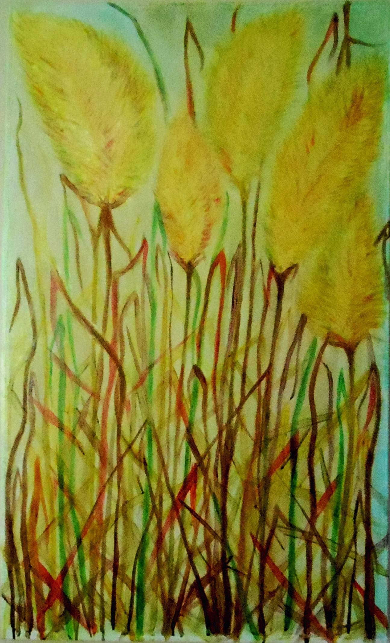 new yellow broome grass.jpg