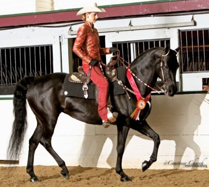 Isabelle Abderholden and Indian Summer Silhouette. Meet them at the Midwest Horse Fair.