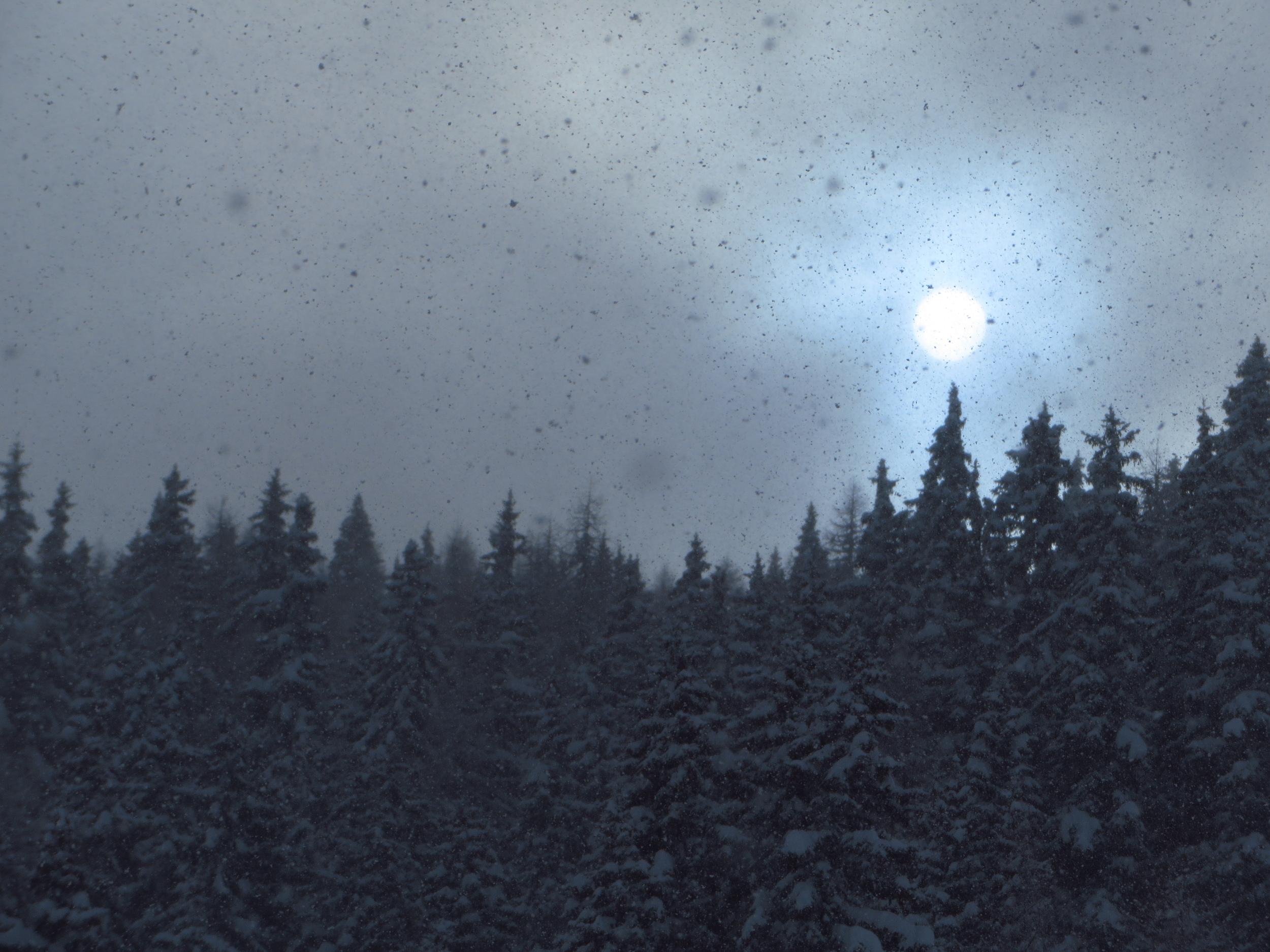 Bruson snow day