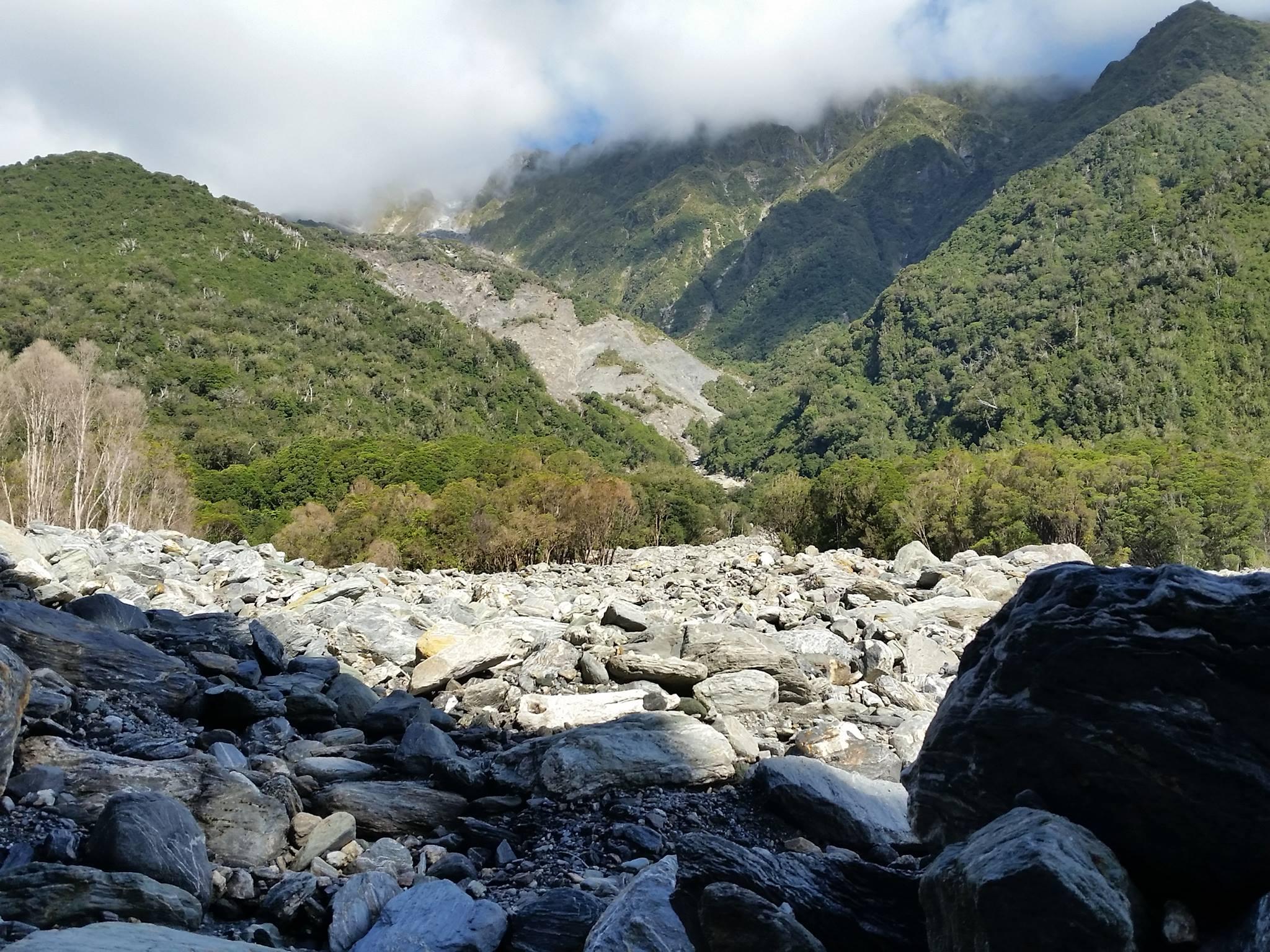 Bushwhacking near Fox Glacier on the west coast of NZ Photo: Julius Brash