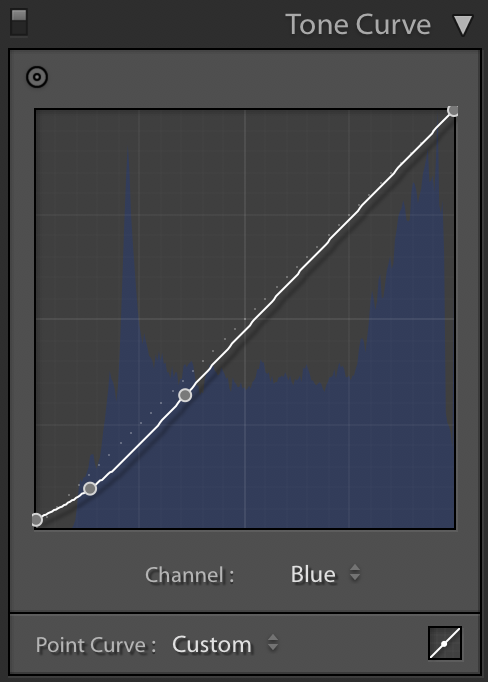 5- CURVES - BLUE.png