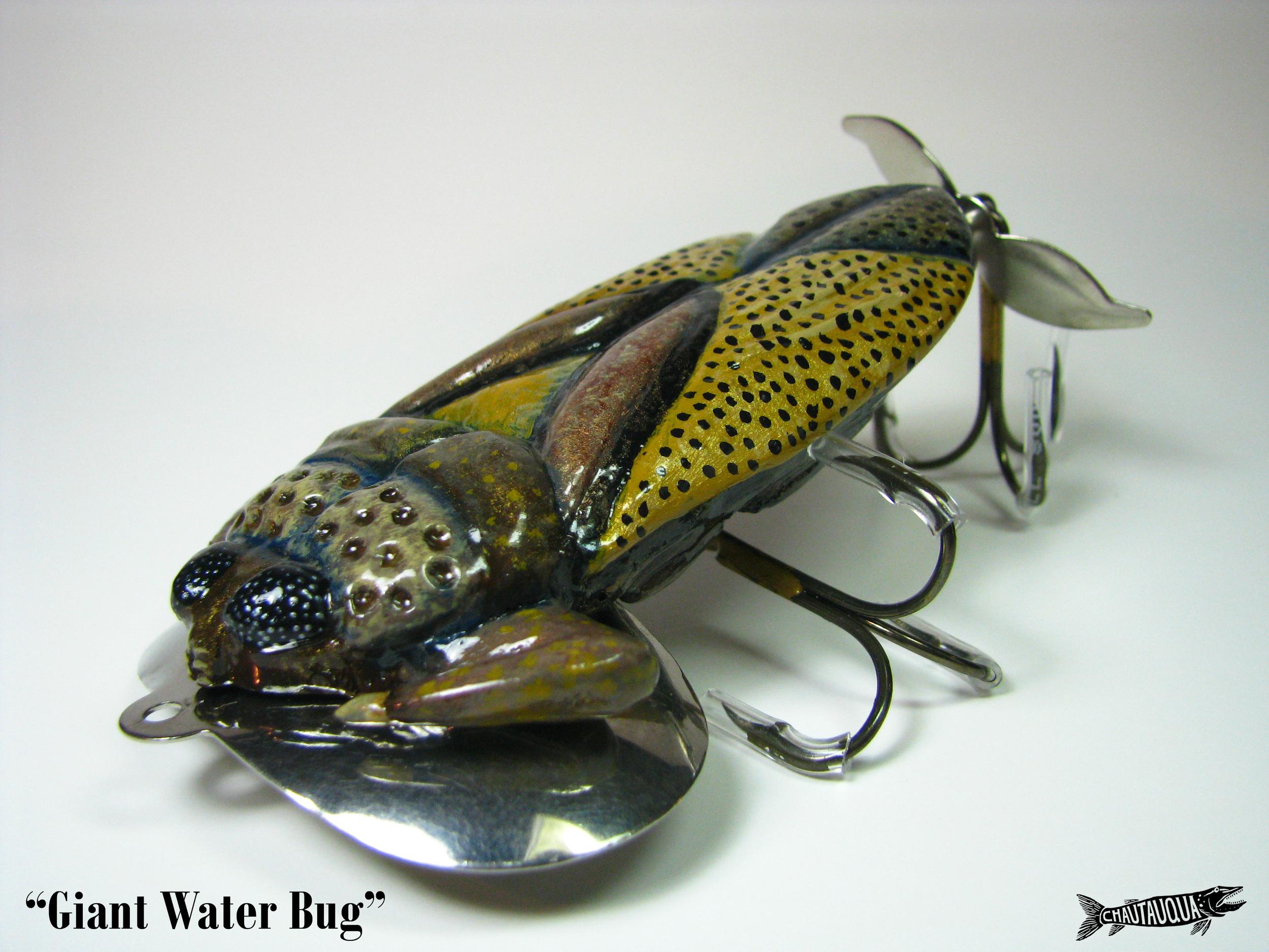 Giant Water Bug3.jpg