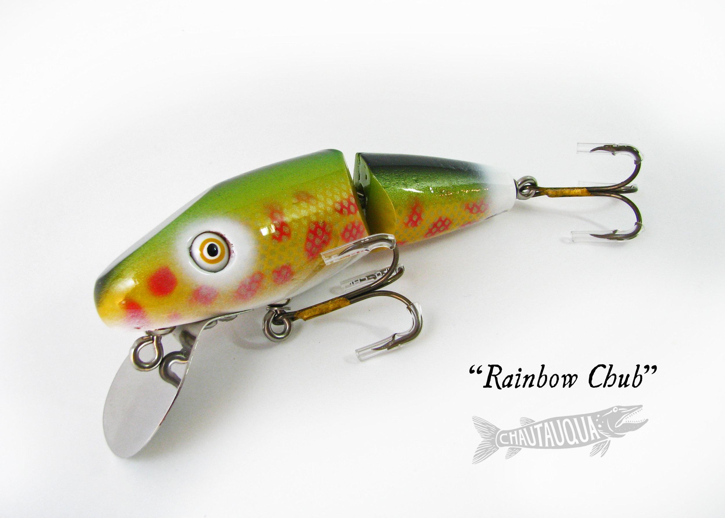 Rainbow Chub_SS.jpg