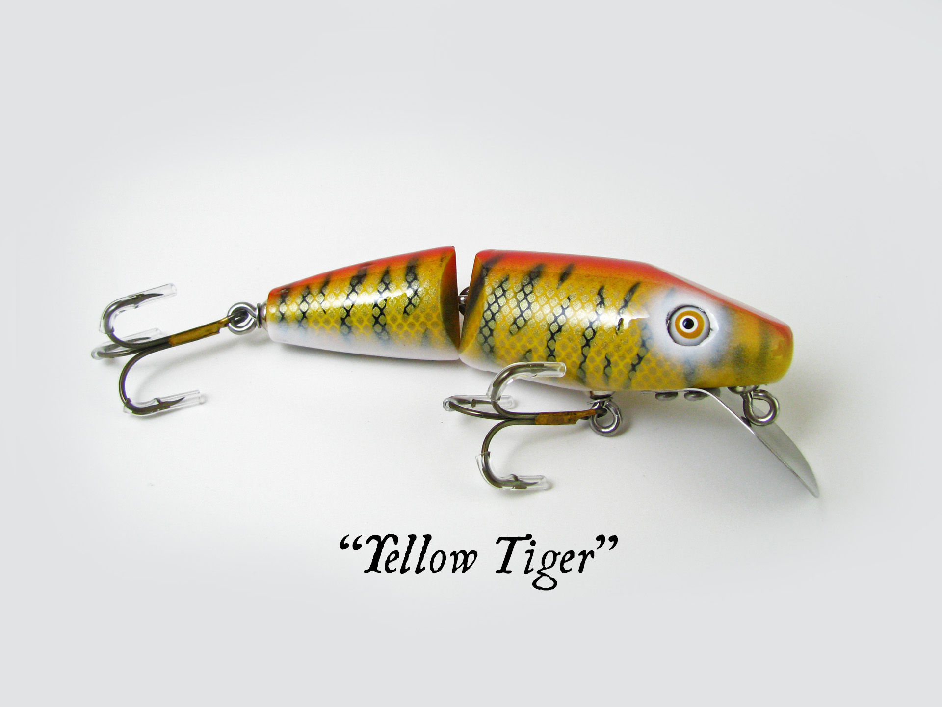 Super Shark_Yellow Tiger.jpg