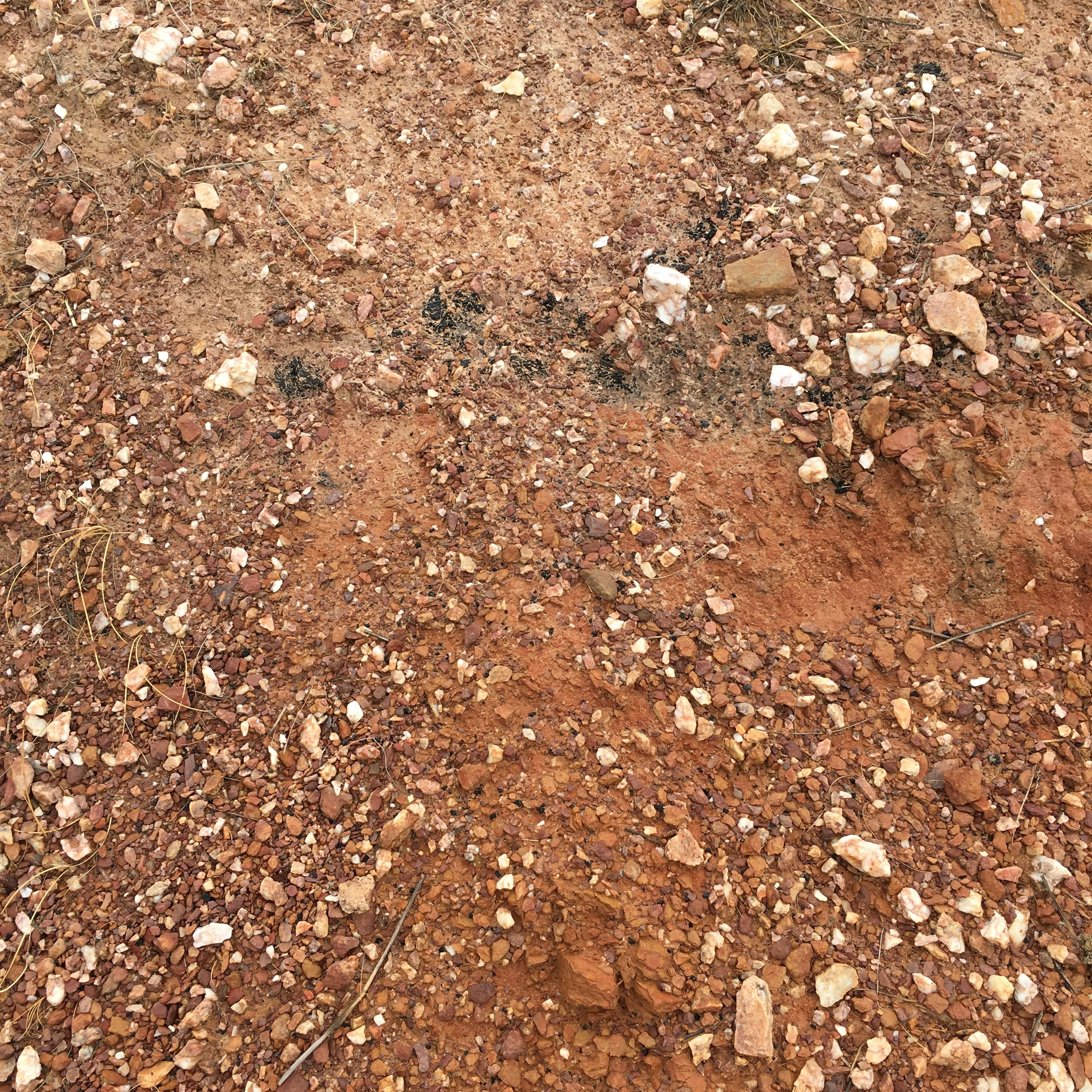 Soil at the Malakoff Estate vineyard