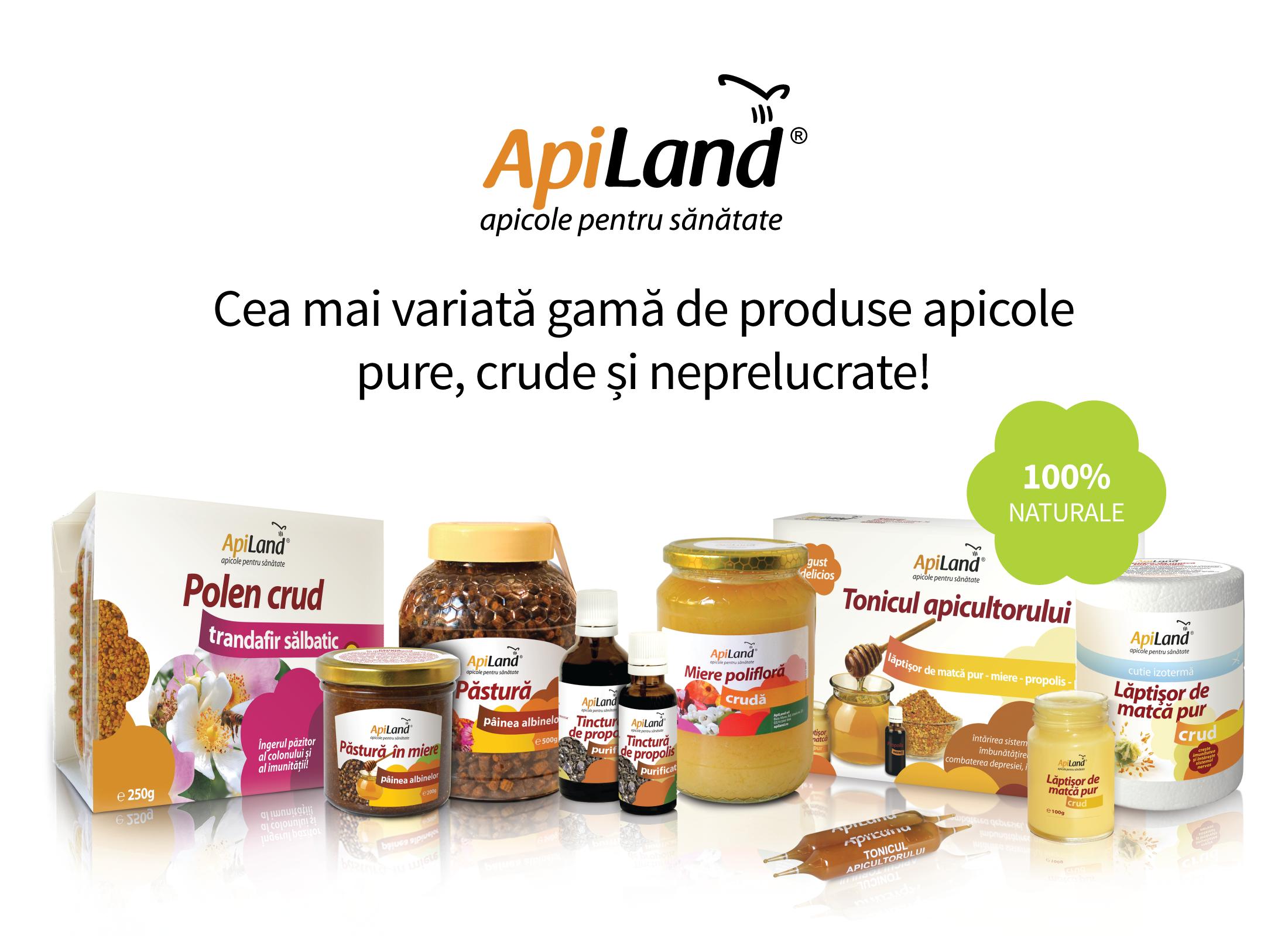 apiland_newsletter_2.png