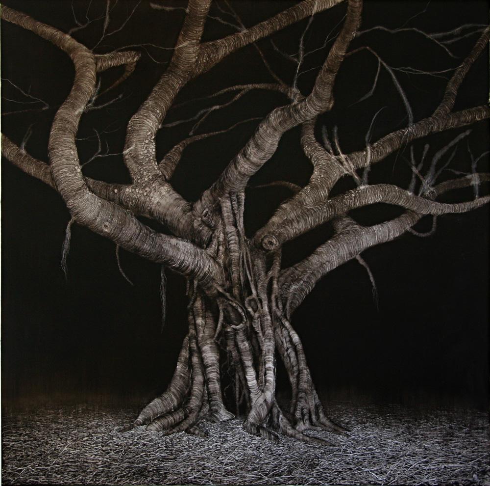 Domain Night Fig, 2006. Oil on paper. 89cm x 89cm.