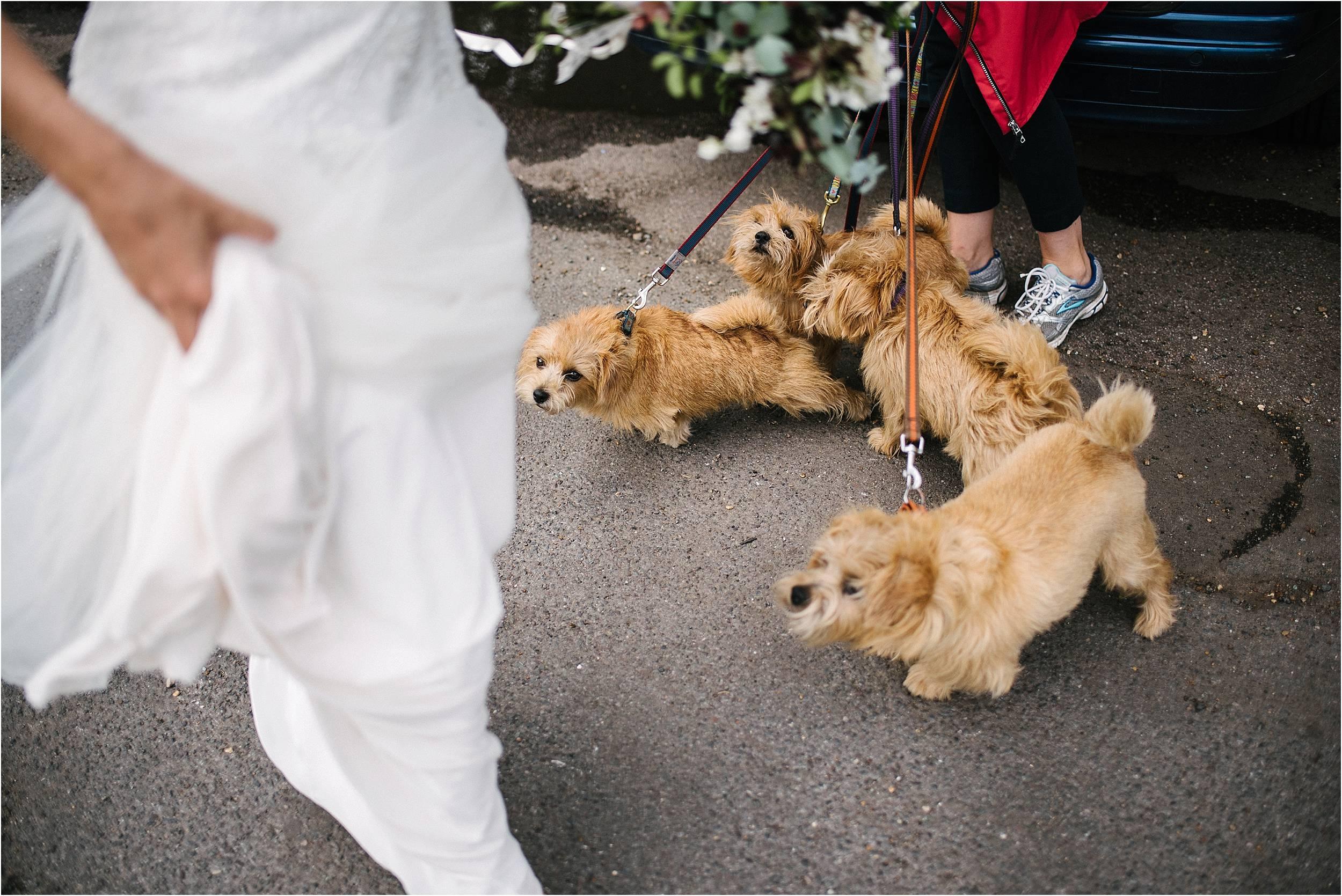 Putney Wedding Photography_0148.jpg