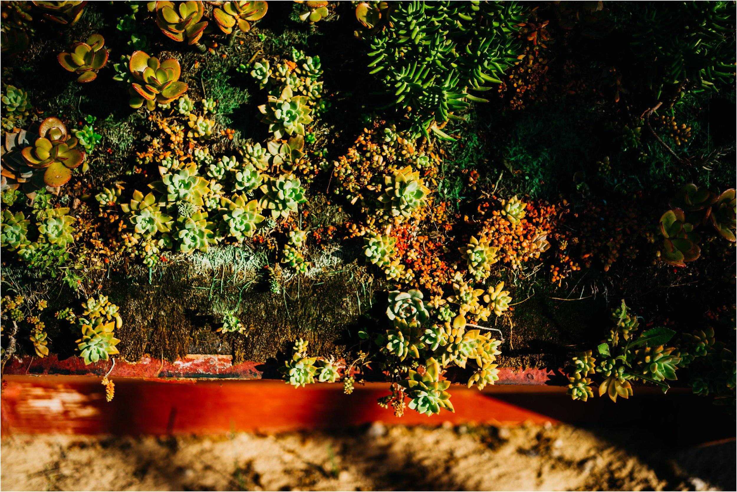 Barcelona Spain destination wedding photographer_0094.jpg